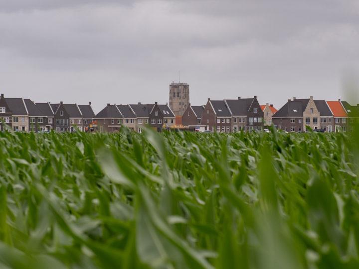 Nieuwe Oostdijk Goedereede