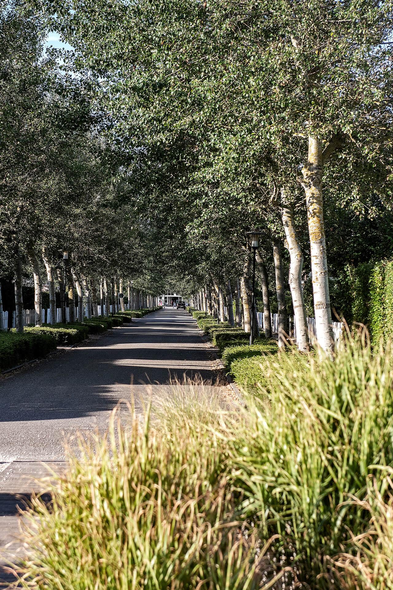 Leisure Architectuur - De Banjaard (Kamperland) toegangsweg