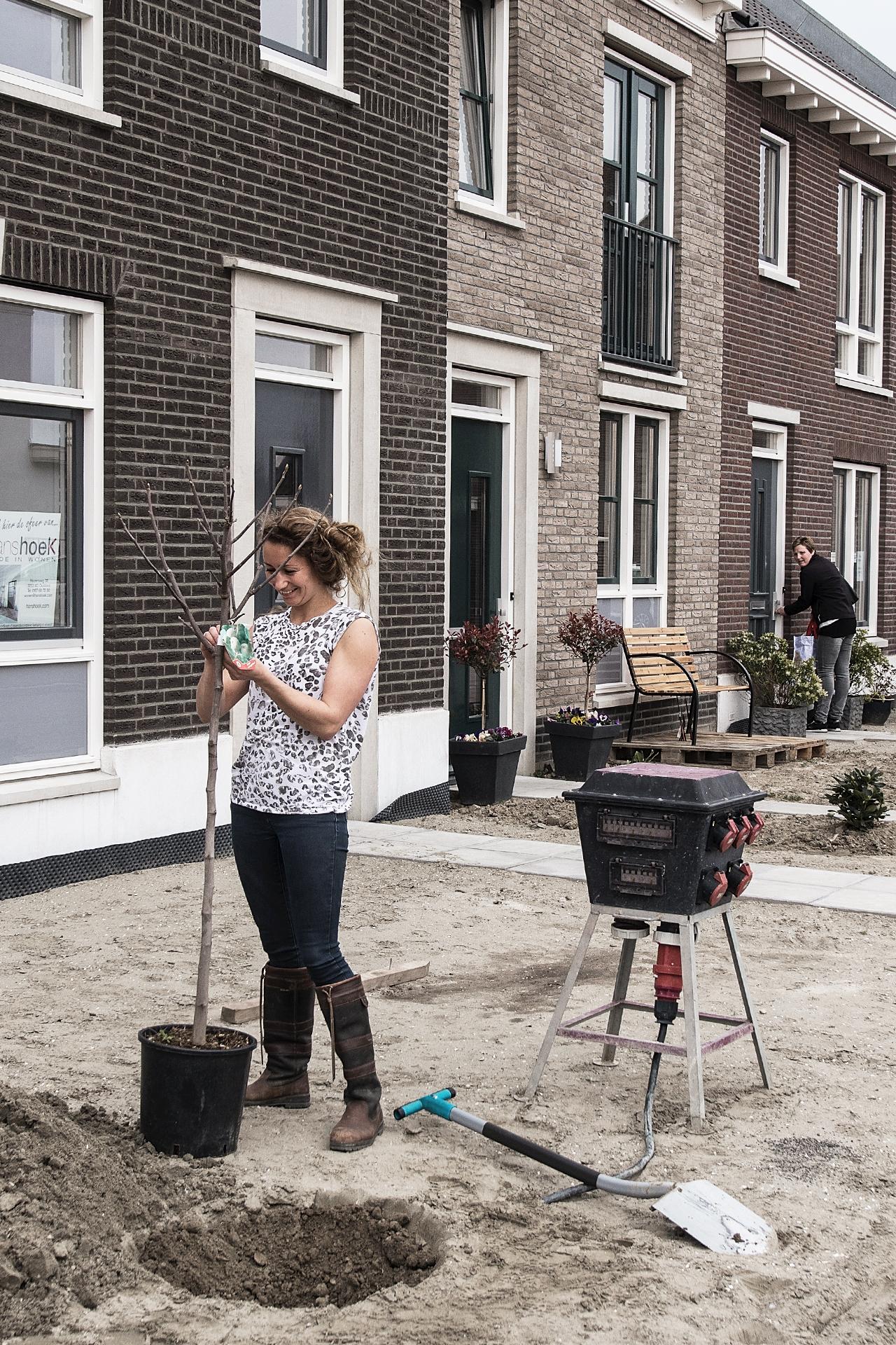 Nieuwe Oostdijk (Goedereede) straatbeeld