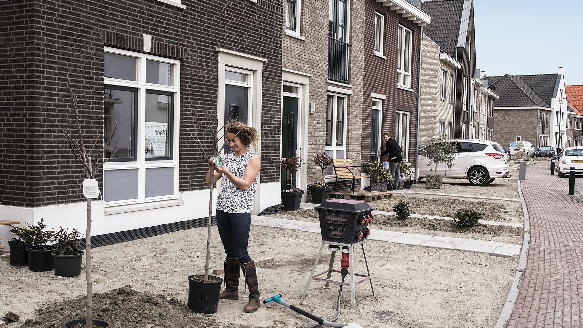 Nieuwe Oostdijk (Goedereede) - sfeer woonwijk
