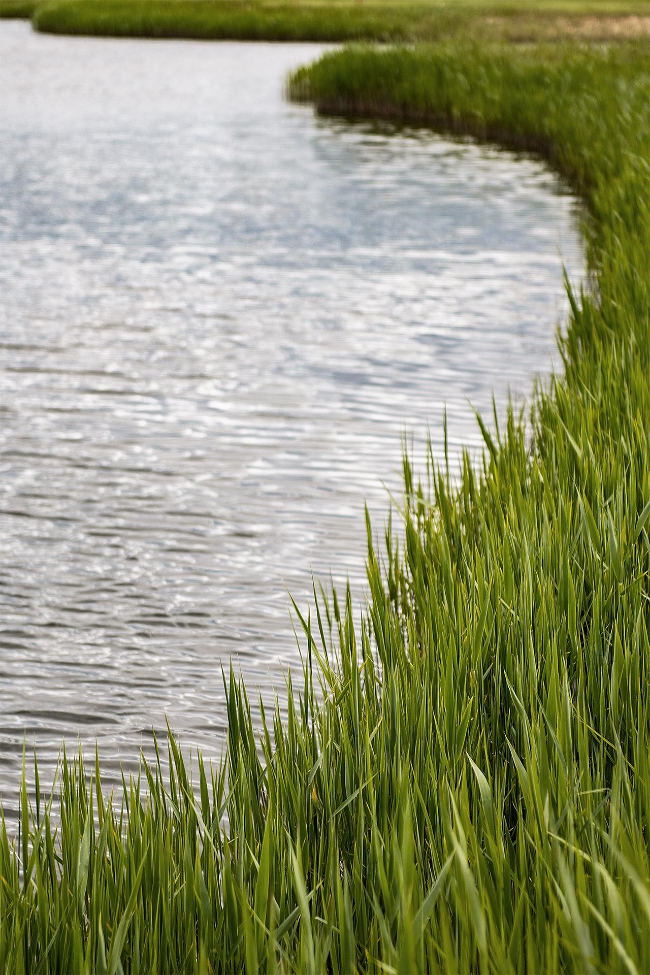 Buitenhof (Lelystad) - sfeer water