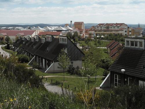 Villapark Hochsauerland (Medenbach) - park sfeer